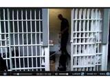 Собаки-шукачі знайдуть телефони в ув'язнених